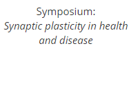 Symposium: Synaptic plasticity in health and disease
