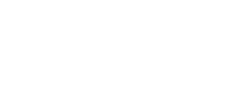 Credibility in Neuroscience